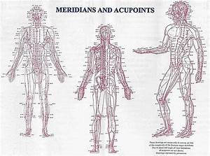 Meridians In Traditional Chinese Medicine