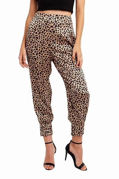 Cuff Leopard Pant Clothing Pants Bardot Night
