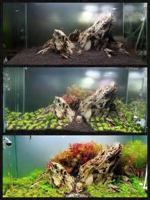 Freshwater Aquarium Aquascape Design Ideas