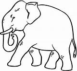 Elephant Coloring Strutting sketch template