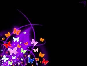 neon butterfly 3D and CG & Abstract Background