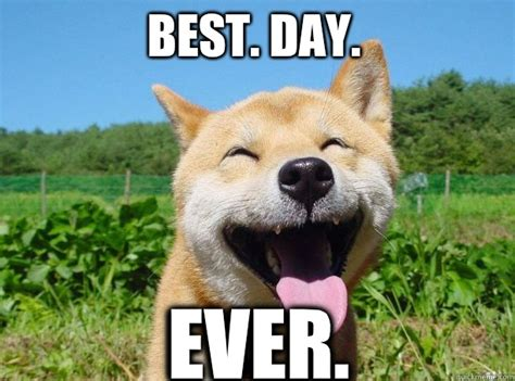 Best Day Ever Meme - freedom hunger happy first day to the rest of your life