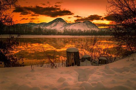 beautiful landscaping  unique warm winter landscape