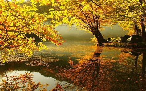 Autumn Themed Wallpapers For Android by Relaxing Fall Wallpaper Www Bilderbeste