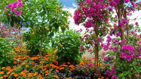 Garden Picture Hd by Flowers Garden Sea Mountains Beauty Free Hd Wallpapers