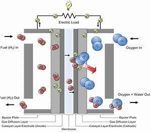 Basic Diagram Of A Pemfc  Proton Exchange Membrane Fuel Cell  Source