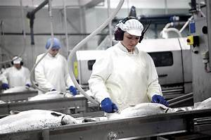 Faroe Islands and Murmansk to cooperate on aquaculture ...
