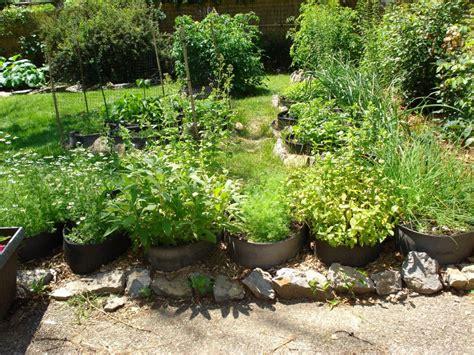 10 herb garden planter ideas