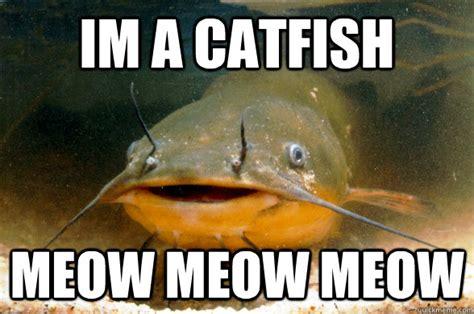 Catfish Meme - catfishing larry solomon of biblical gender roles