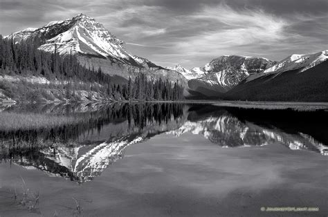 canadian rockies  black  white photograph scenic