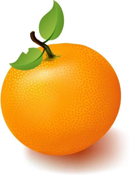 orange clipart orange transparent