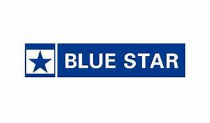 Blue Star to hit Rs 1200cr revenue from room AC ...