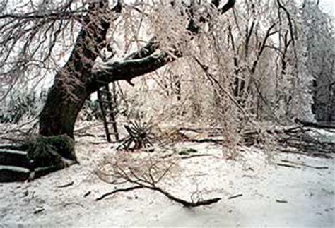 ice storm    retrospective