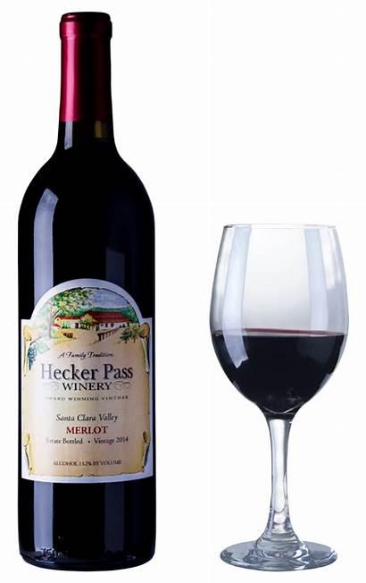 Zinfandel Merlot Glass Ruby Chianti Carignane Wines