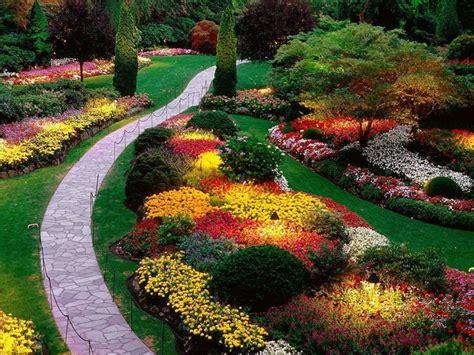 piante da giardino sempre verdi piante da giardino come avere un proprio spazio verde