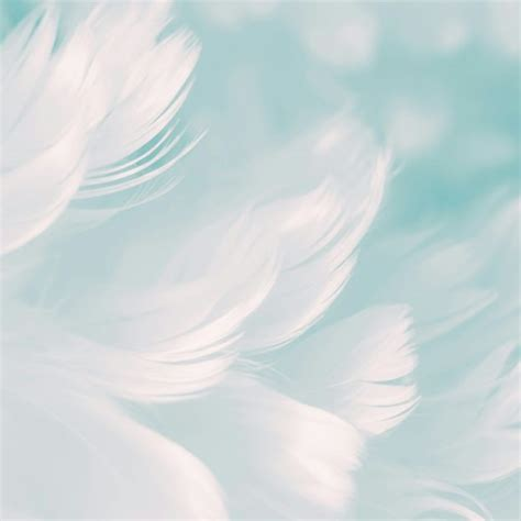 Background Images Simple by White Feathers Cool Simple Backgrounds Abstract Qhd Free