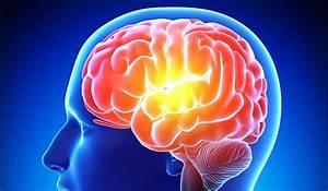 Psi, Memory, Models, U2013, Parapsychology