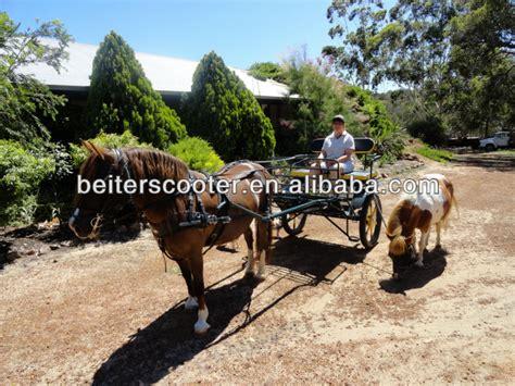 carrozza maratona maratona a cavallo formazione carrozza maratona a cavallo