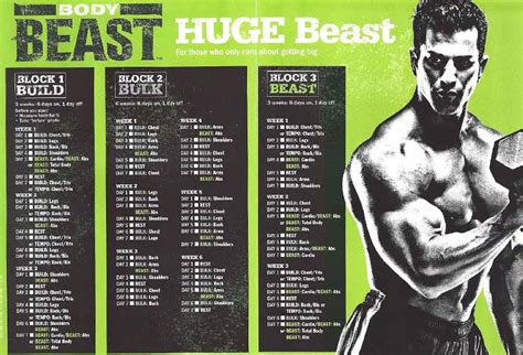 beast worksheets app beast review 2018 a complete breakdown overview