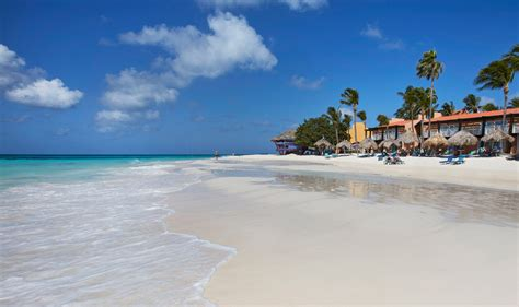 Divi Tamarijn Aruba by Book Now Tamarijn Aruba All Inclusive
