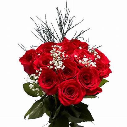 Roses Dozen Valentine Rose Delivery Globalrose Valentines