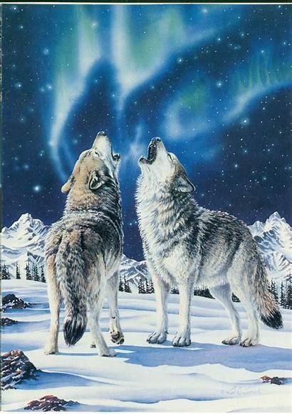 Wolves Aurora Borealis Wolf Fantasy Google Snow