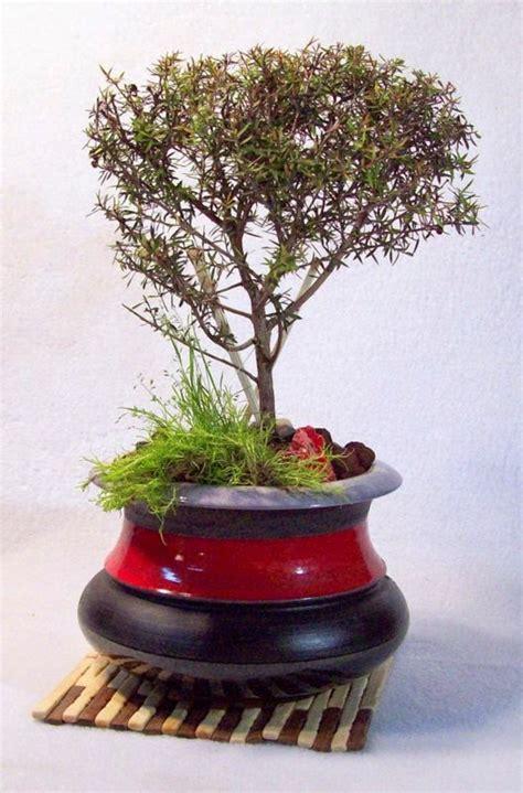bonsai ceramic pots handmade pot flower