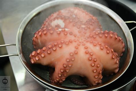 cuisiner poulpe comment attendrir cuisiner un poulpe à l 39 italienne