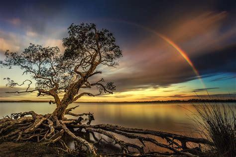 Viewbugs Best Nature Photo Contest Viewbugcom