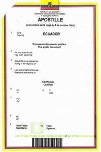 Rechnung Englisch übersetzung : beglaubigte bersetzungen d nisch englisch spanisch deutsch esther bertling ~ Themetempest.com Abrechnung