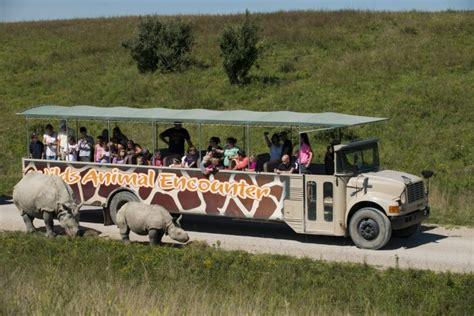 Go on Safari in Ohio: Take a Wilds Tour! (plus other ...