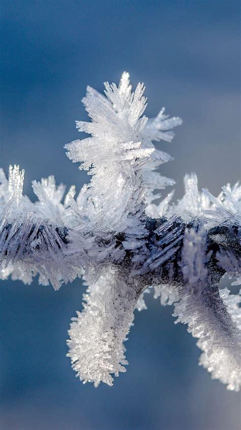 frozen ice wallpaper   background hd wallpaper