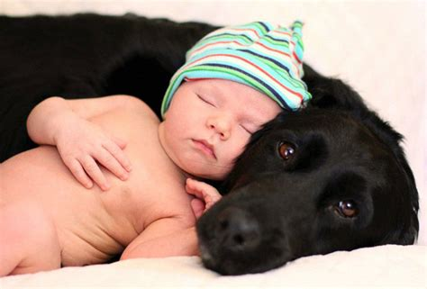 Kids And Dogs Make The Best Friends And These Photos Prove