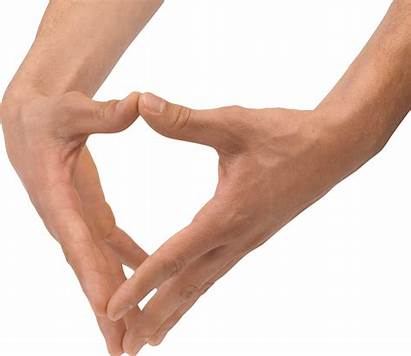 Hands Hand Clipart Transparent Legs Clip Forearm