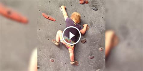 video   mois ce bebe escalade  mur de  metres