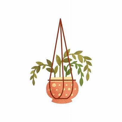Hanging Plant Pot Vector Illustrations Clip Flower