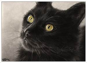 What would October be without some Black Cat art? | The ...