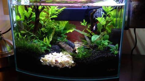 Betta Aquascape by Aquascape Mizuchi S River 2 5 G Betta Aquarium