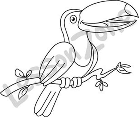 toucan clipart black and white black and white toucan drawing pictures to pin on