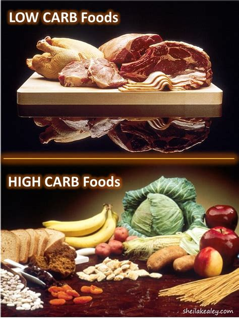 cuisine high what foods are high in carbs best food 2017