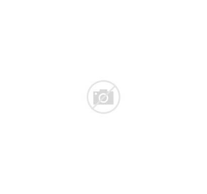 Ron Weasley Potter Harry Pop Broom Funko