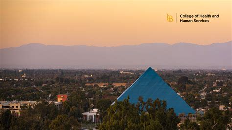 chhs zoom backgrounds california state university long