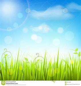 Spring Meadow Grass Blue Sky Poster Stock Vector ...