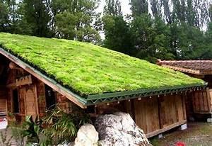 toiture vegetalisee comment la fabriquer soi meme With maquette d une maison 1 fabriquer une mini serre les etapes astuces bricolage