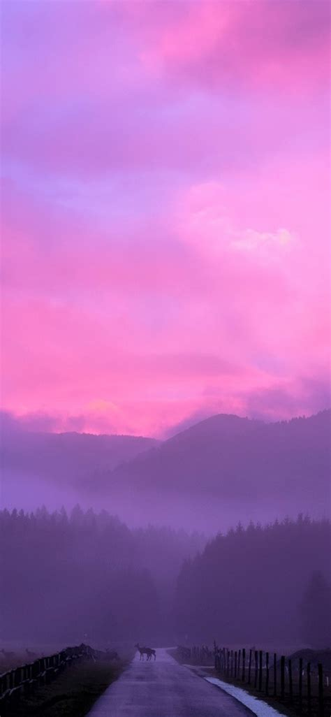 1125x2436 Misty Pink Sunset Iphone Xs,iphone 10,iphone X
