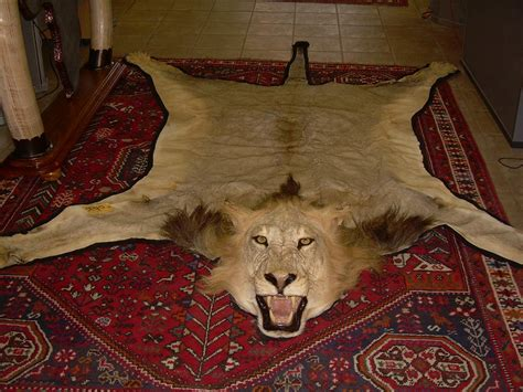 trans african taxidermists
