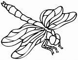 Dragonfly Coloring Printable Kleurplaten Libellule Animaux Tekening Dragon Sheets Animals Insecten Coloriage Boek Kristallen Bladzijden Libelle Kleuren Mozaieken Results Drawing sketch template