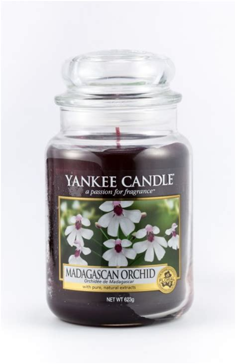 best candles in the world 10 most affordable best smelling candles in the world