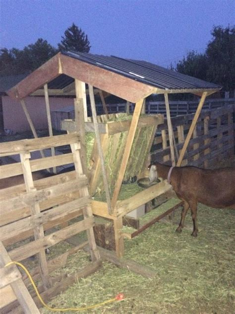 goat hay rack goat feeder using pallet boards a of heritage