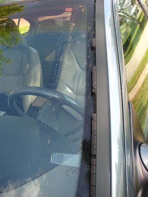 windshield rubber side weather stip